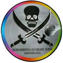 Head hornys & dj miguel serna - Something real picture disc (new)