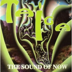 Taiga ‎– The Sound Of Now